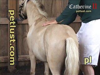Pc440 Horse 3 Way 001