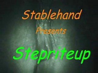 Stepriteup1
